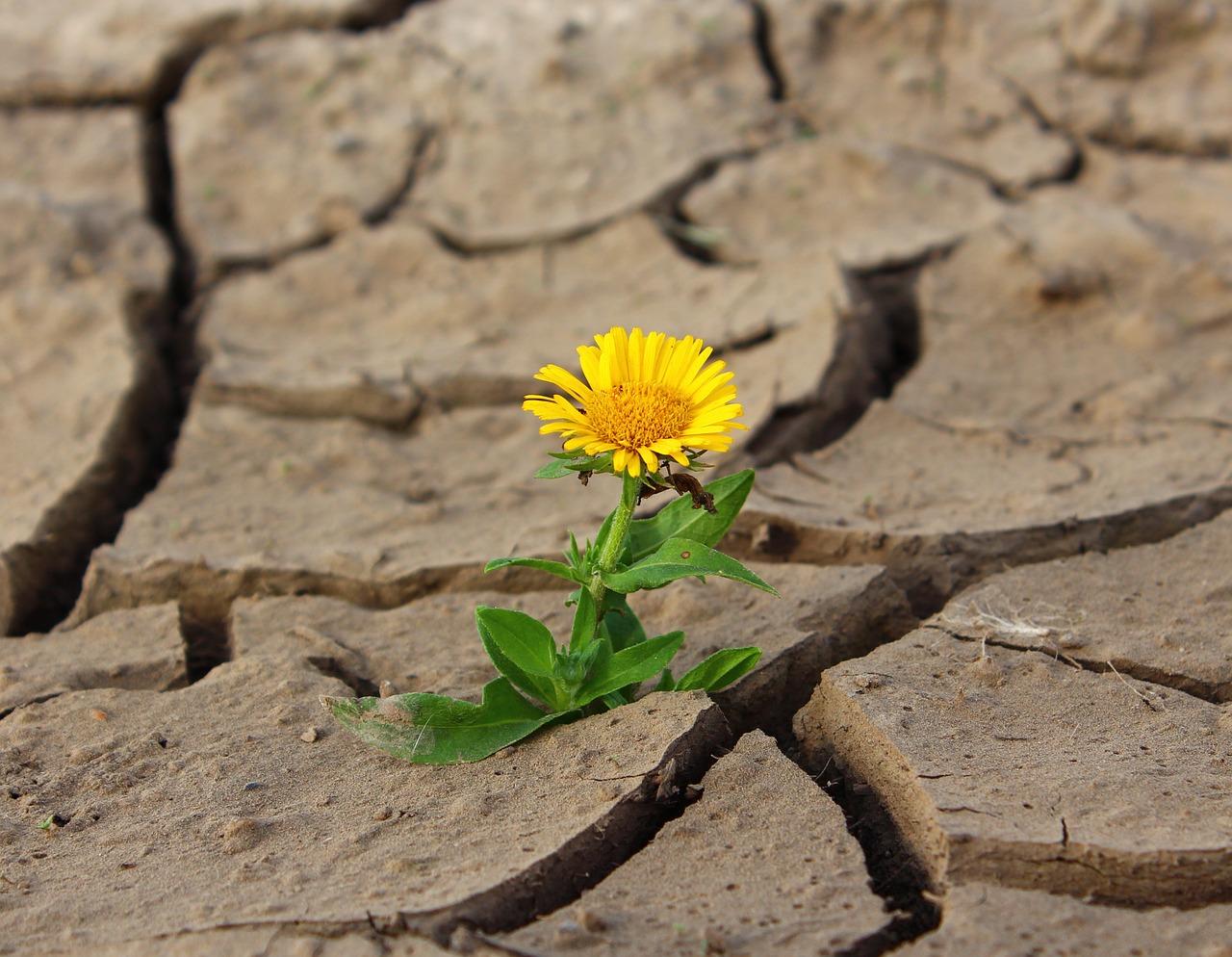 乾燥は、絶対に老け手に関係する!